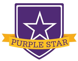 Older veteran with soldier Purple star logo